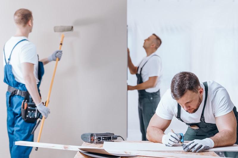 Professional Painter