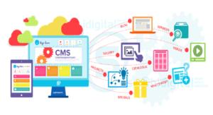 CMS website development service